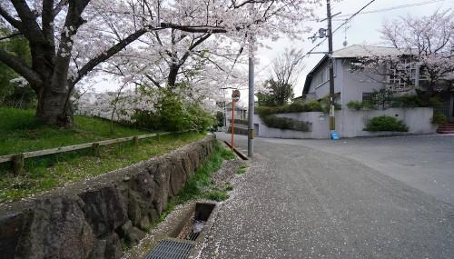 GWの予定,設計事務所,建築,高級注文住宅設計,大阪,神戸,京都