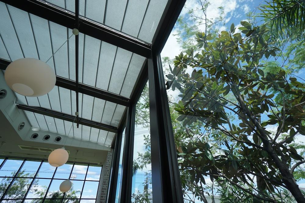 敷地調査,大阪,建築家,高級注文住宅設計,コートハウス,中庭の家,ラグジュアリー,植物デザイン